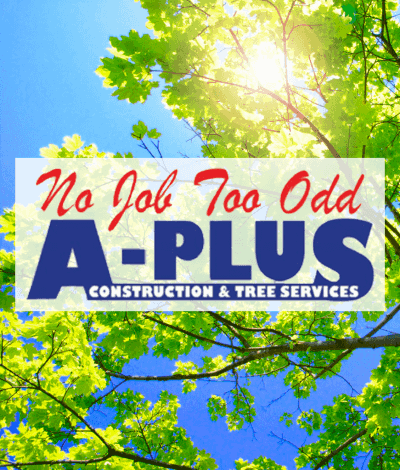 A-Plus Construction and Tree Services