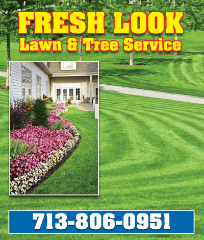 Fresh Look Lawn and Tree Service